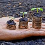Crescimento sustentável: 6 dicas para a sua empresa atingi-lo